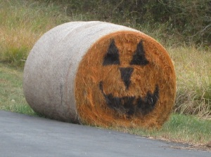 Farmers harvest a HUGE smile for Halloween.